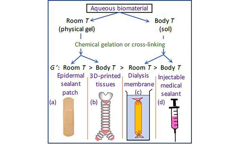 Adjusting processing temperature results in better hydrogels for biomedical applications