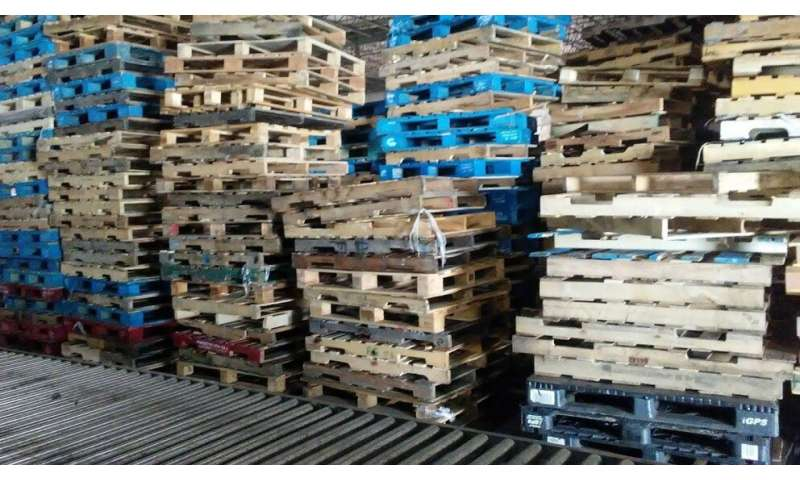 After shipping, pallets pose big risk to public, cause many accidents, injuries thumbnail