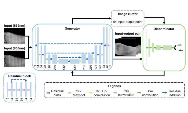 AI-based 'OxyGAN' is a robust, effective method to measure tissue oxygen levels thumbnail