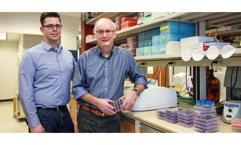 Alberta researchers, Tonix Pharmaceuticals race to develop candidate vaccines for COVID-19