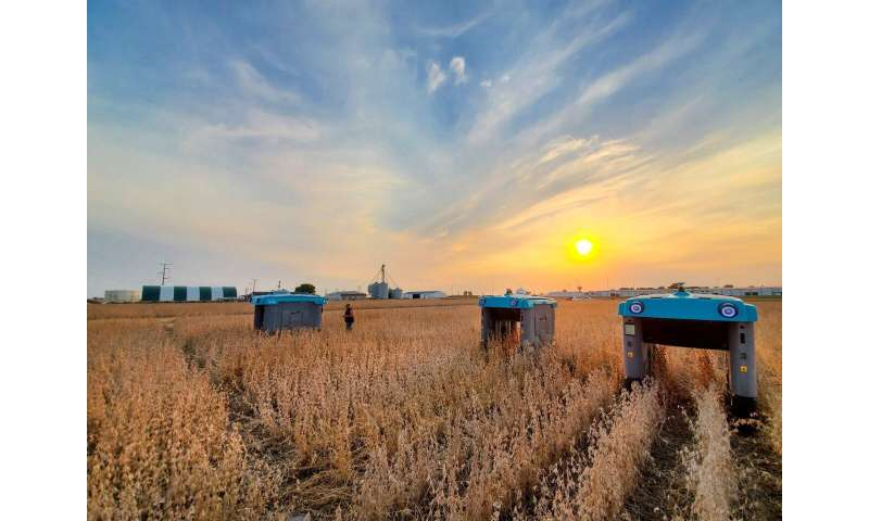 """Alphabet's X lab announces """"Mineral"""" project to increase sustainable food production"""