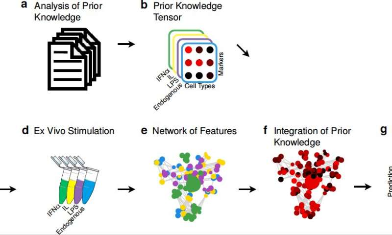 A machine leaning model that incorporates immunological knowledge
