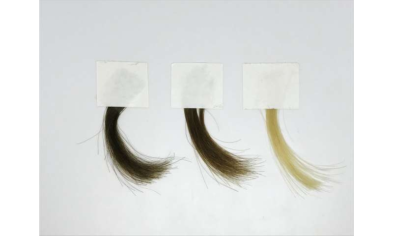 A milder hair dye based on synthetic melanin