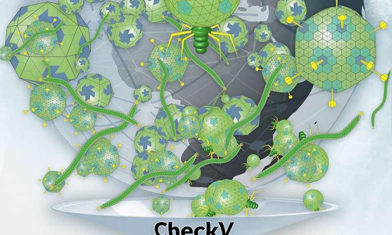 Una herramienta automatizada para evaluar la calidad de los datos de virus