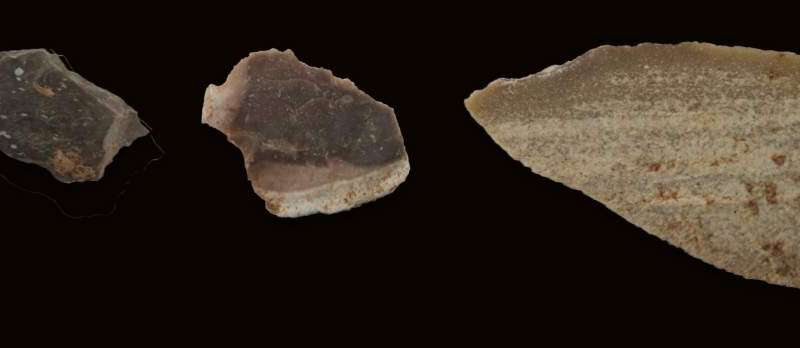Ancient hominins used fire to make stone tools