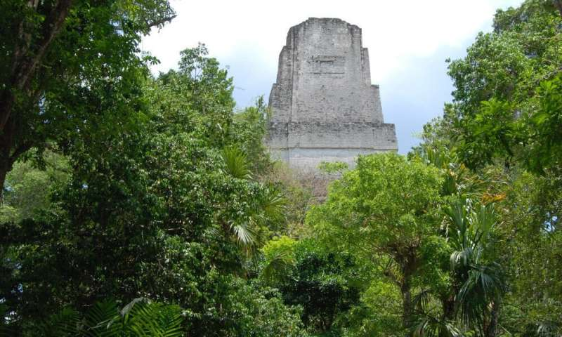Ancient Maya reservoirs contained toxic pollution