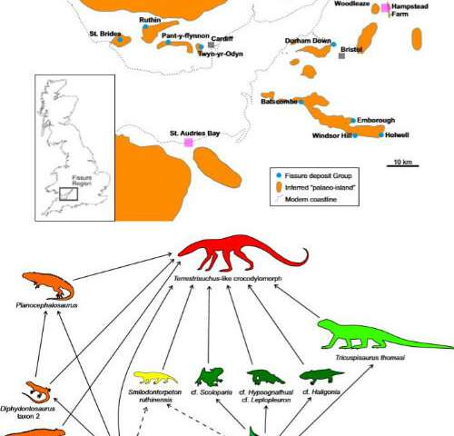 Ancient North American reptiles lived on an island archipelago in South Wales