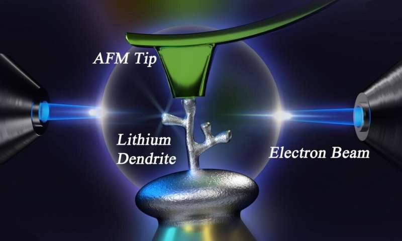 A new method to study lithium dendrites could lead to better, safer batteries