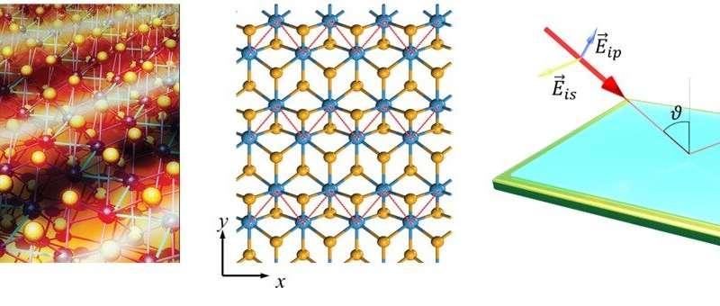Anisotropic plasmons in quasi-metallic 2D materials