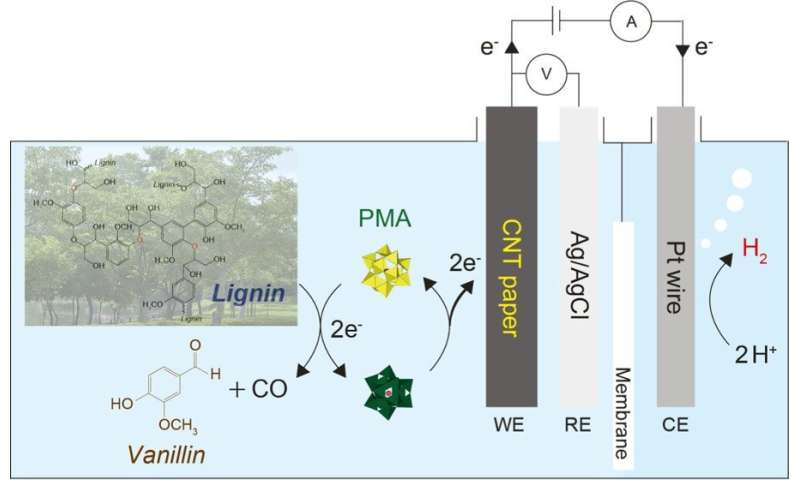 A novel biofuel system for hydrogen production from biomasss