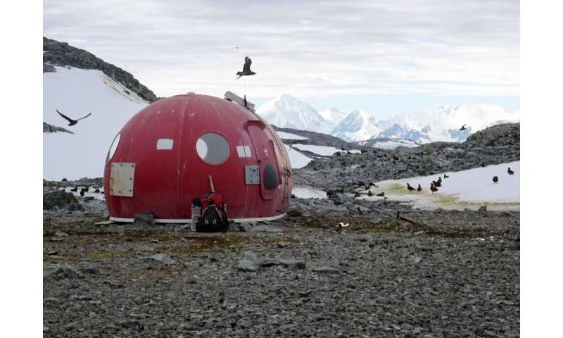 """Antarctica's """"high human impact areas"""" often overlap with areas important for biodiversity"""