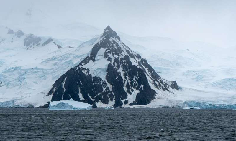 Antarctic endeavours, primary health-care research and dark matter exploration – the coronavirus casualties you haven't heard of