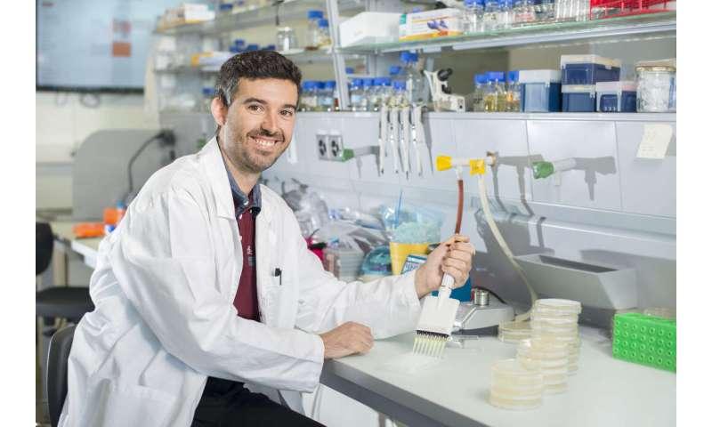 Anti-evolution drug could stop antibiotic resistance