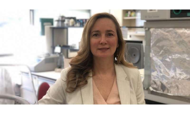 Antiviral used to treat cat coronavirus could hold key to COVID-19