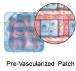 A patch that could help heal broken hearts