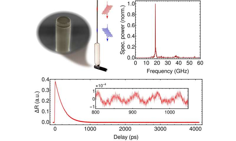 A Plug-and-play approach to integrated nanoacoustics