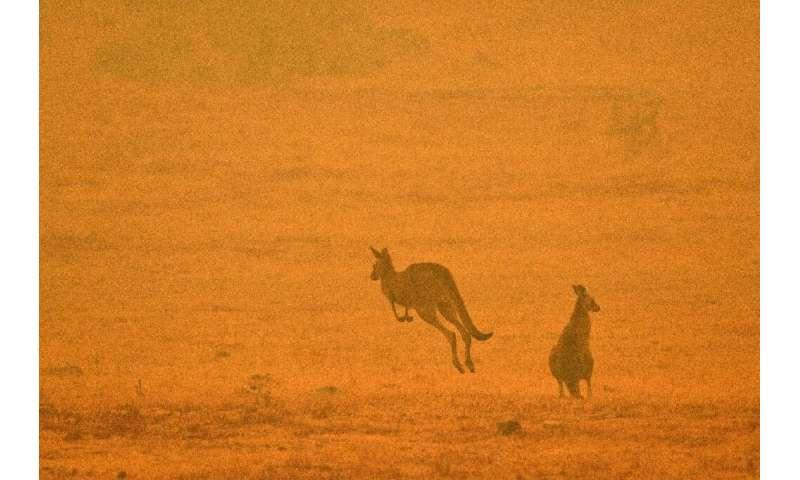 Authorities remain on high alert in Australia, warning that the bushfire season still has weeks to run