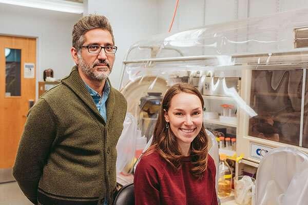 Bakar Fellow Q&A: Can microbes mine for metals?