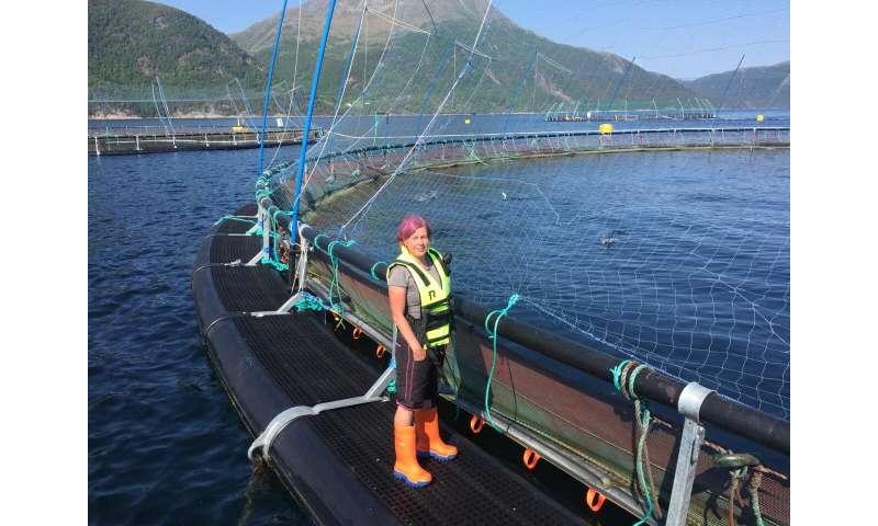 Biorobotics is the future of fish farming