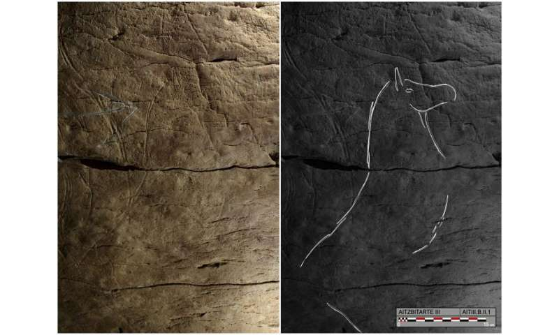 Bison engravings in Spanish caves reveal a common art culture across ancient Europe