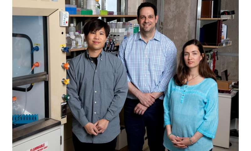 Boosting levels of good fats with an experimental drug that acts on two newly characterized genes