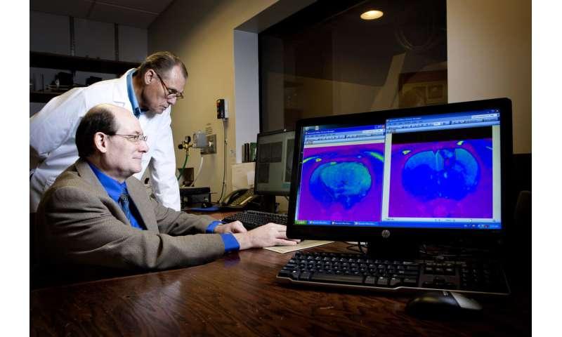 Brain tumor drug receives rare disease designations from the FDA