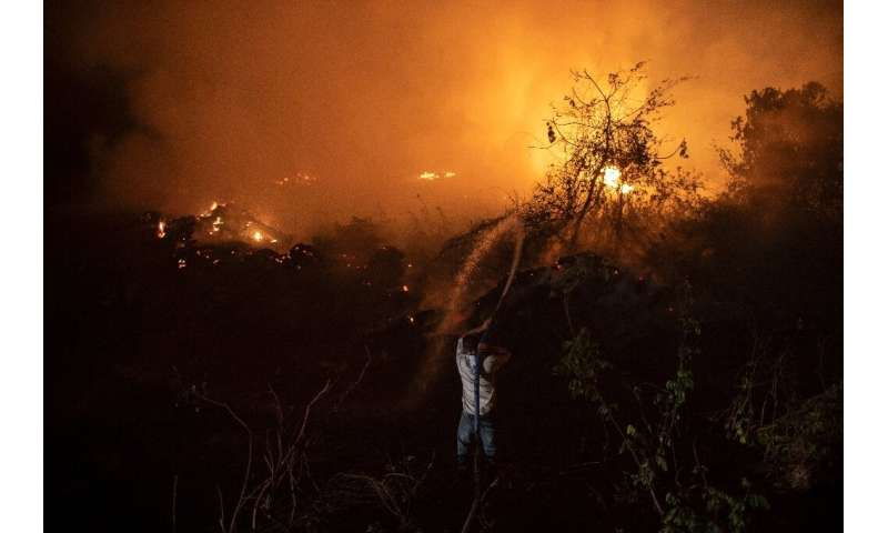 Brazil's Pantanal—the world's biggest tropical wetlands—is suffering its worst fires in more than 47 years