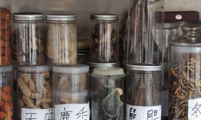 Building sustainability into traditional Chinese medicine trade on the new Silk Roads