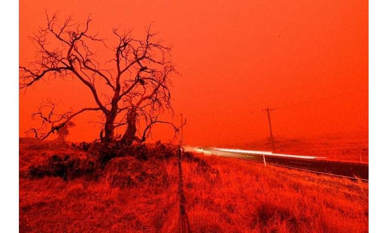 Bushfires are threatening wildlife across Australia