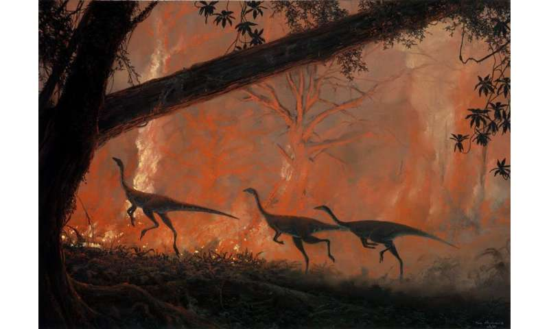 Bushfires have reshaped life on Earth before. They could do it again