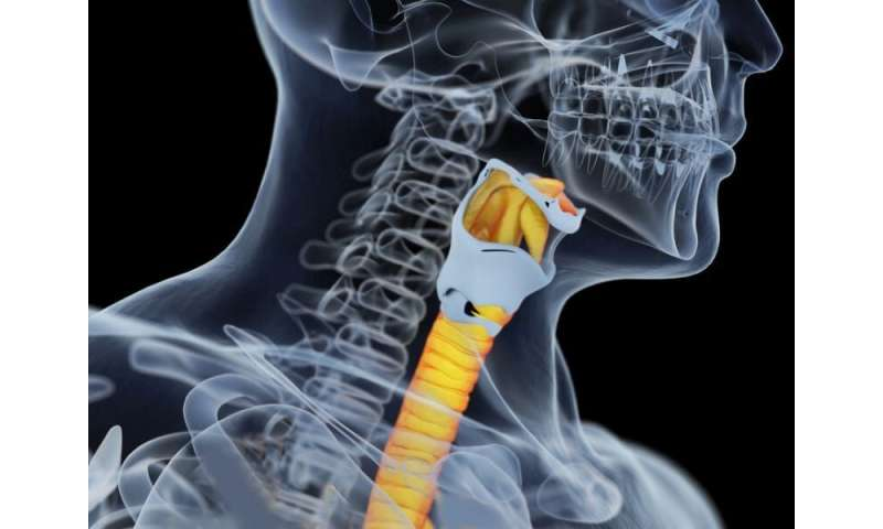 CDC: 2009 to 2017 saw increase in oral cavity, pharynx cancers