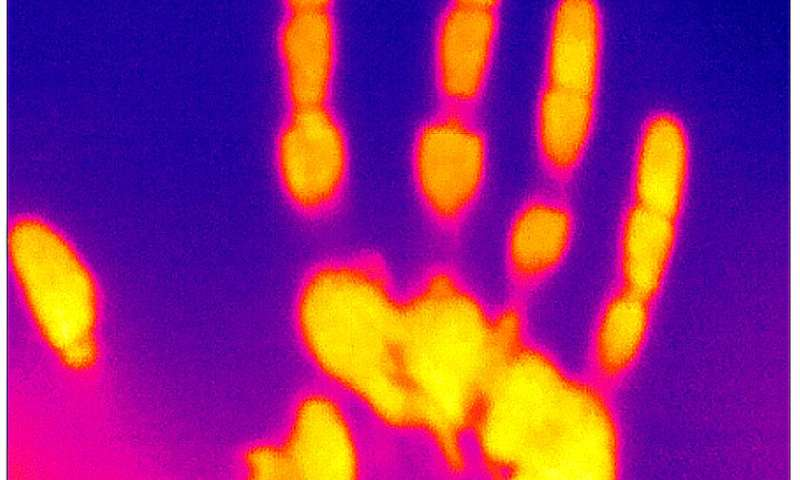 Changing how we think about warm perception