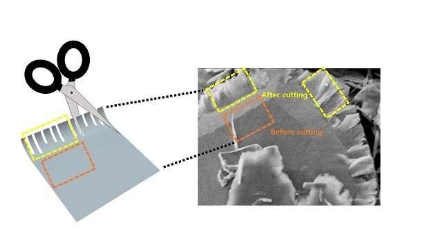 Chemical scissors snip 2-D transition metal dichalcogenides into nanoribbon