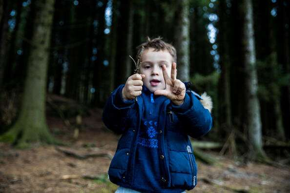 Children need self-regulation to learn                                       According to a new study,