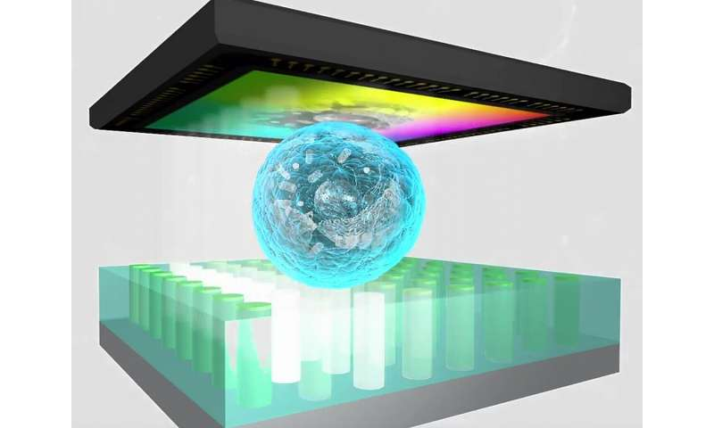 ChipScope – a new approach to optical microscopy
