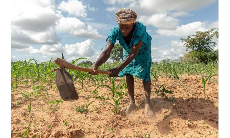 Climate extremes: A year ago, Josephine Ganye was hit by a devastating cyclone—now she is struggling with a crippling drought