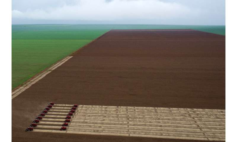 Combine harvesters crop soybean during in Mato Grosso state, Brazil