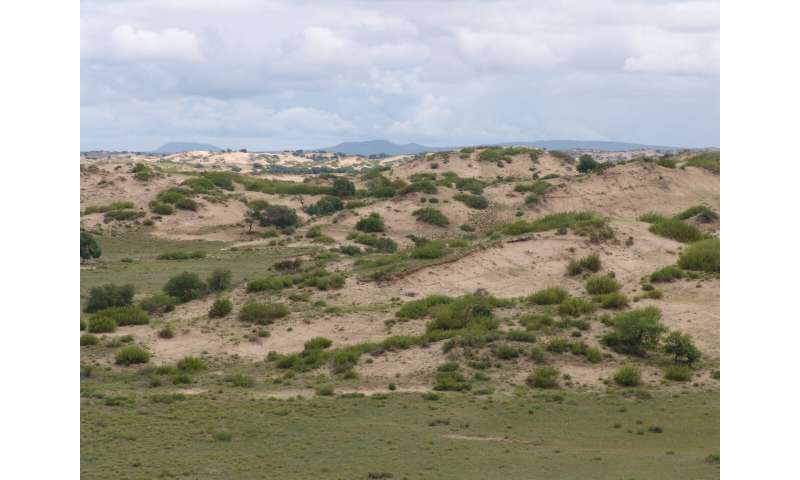 Complex local conditions keep fields of dunes from going active all at once