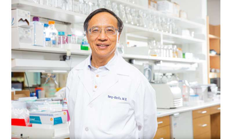 Could cancer immunotherapy success depend on gut bacteria?