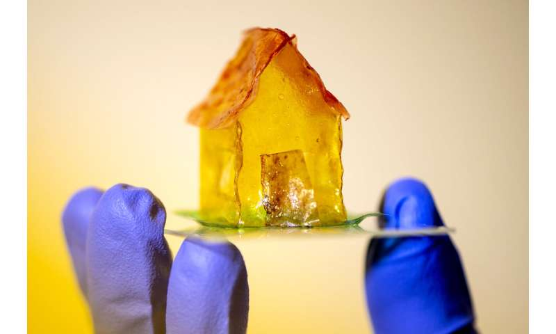 Could houses of the future be made by bacteria?
