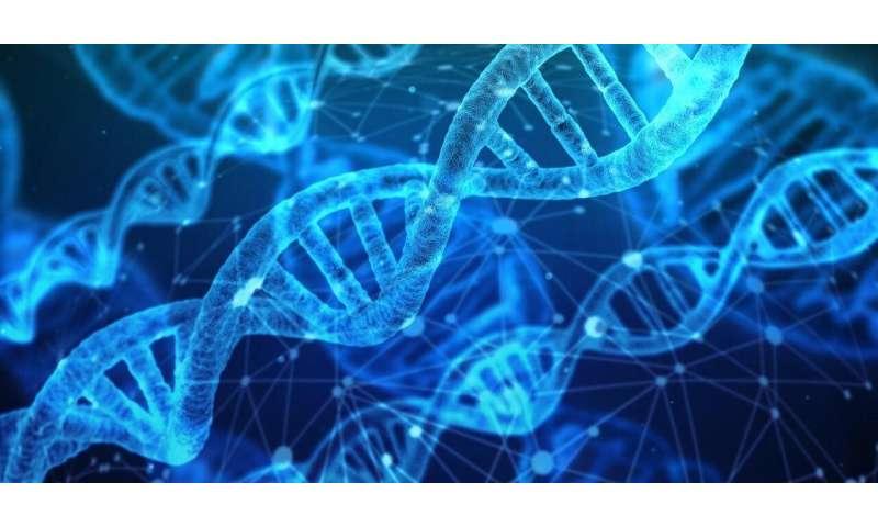Decoding the genetics that drive disease