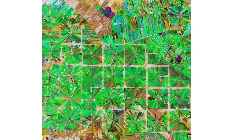 Deforestation in Bolivia