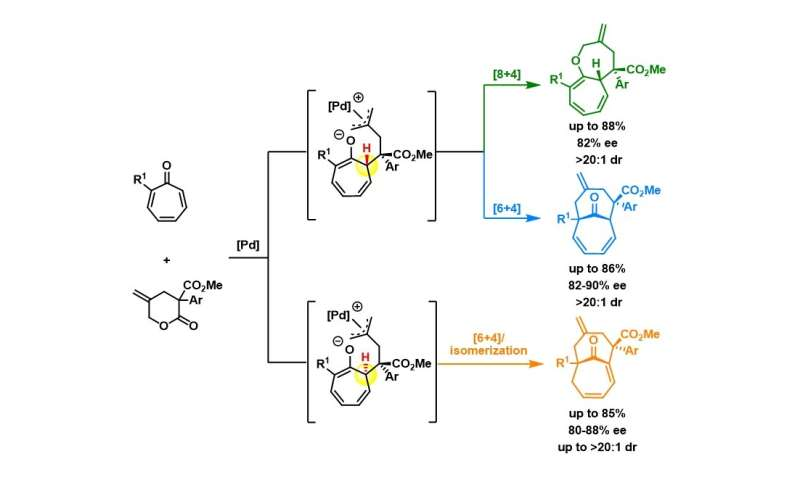 Divergent synthesis of bicyclic medium-sized ring structures