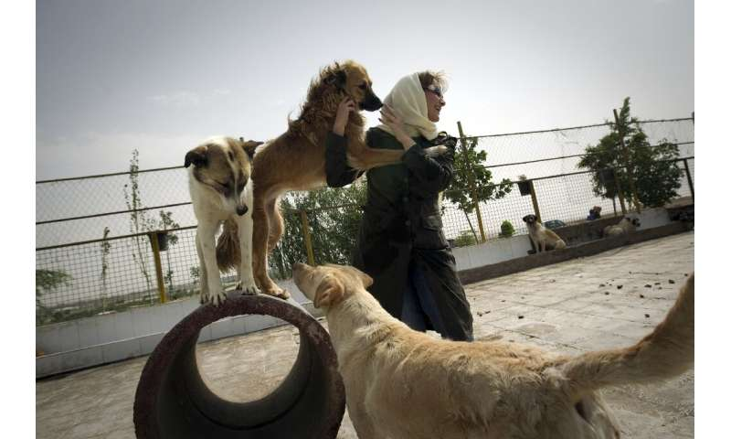 Dog lover Neda plays with stray canines at the Vafa animal shelter in Hashtgerd, Iran in June 2011