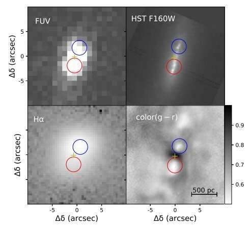 Double nuclei in the galaxy IC 676 investigated by researchers