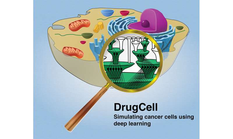 DrugCell: new experimental AI platform matches tumor to best drug combo