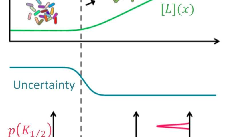 Dynamic risk management in cell populations