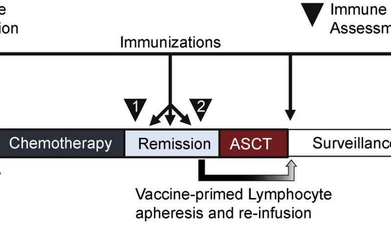 Early clinical trial supports tumor cell-based vaccine for mantle cell lymphoma