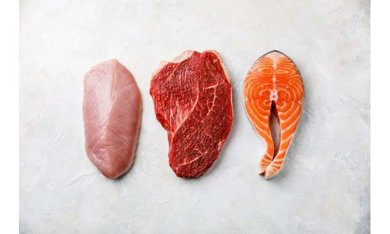 Eating meat: links to chronic disease might be related to amino acids –new findings