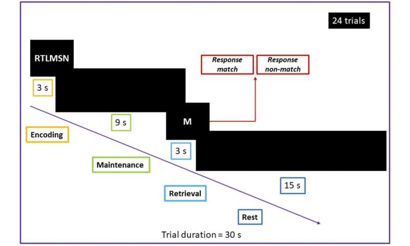 Efficiency of non-invasive brain stimulation for memory improvement: Embracing the challenge